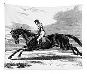Race Horse, 1857 Tapestry