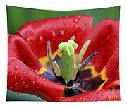 Rain Kissed Tulip 2 Tapestry