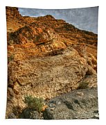 Rainbow Canyon 2 Death Valley Tapestry
