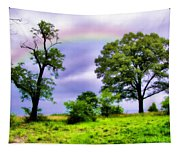 Rainbow Connection Tapestry