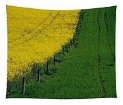 Rapeseed Growing In A Field, Ireland Tapestry