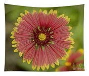 Red And Yellow Tapestry