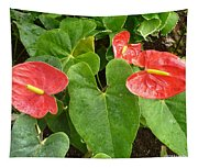 Red Anthurium Tapestry