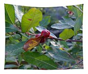 Red Berry  Tapestry