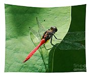Red Dragonfly          Tapestry