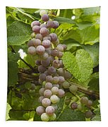 Red Grapes On The Vine Tapestry