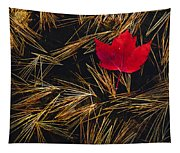 Red Maple Leaf On Pine Needles In Pool Tapestry