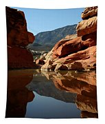 Red Rock Canyon Water Tapestry