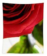 Red Rose In Glass Vase Tapestry