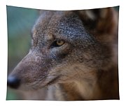 Red Wolf Stare Tapestry