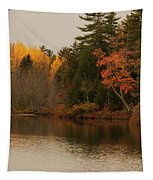Reflecting On Autumn Tapestry