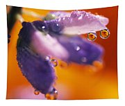 Reflection Of Flower In Dew Drops Tapestry
