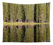 Reflections Along Summit Lake Tapestry