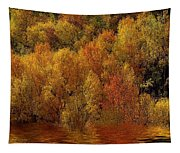 Reflections Of Autumn Tapestry