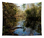 Reflective River Thoughts Tapestry