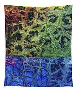 Rhapsody Of Colors 57 Tapestry