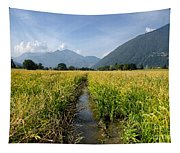 Rice Field Tapestry