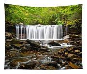 Ricketts Glen Waterfall Oneida Tapestry