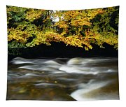 River Camcor Tapestry