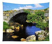 River Owenwee, Poisoned Glen, Co Tapestry