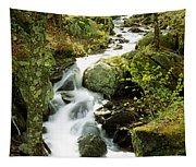 River With Trees In The Forest Tapestry
