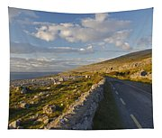 Road Along The Burren Coastline Region Tapestry