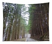 Road In The Forest Tapestry