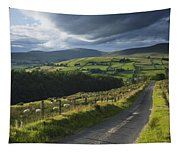 Road Through Glenelly Valley, County Tapestry