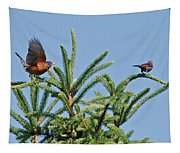 Robin Lift Off Tapestry