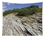 Rock And Sky Tapestry