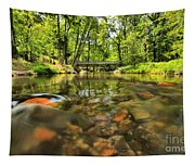 Rock Hole Tapestry