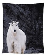 Rocky Mountain Goat Tapestry