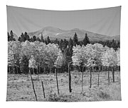 Rocky Mountain High Country Autumn Fall Foliage Scenic View Bw Tapestry