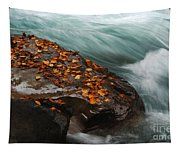 Rocky Mountain Stream Tapestry