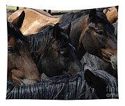 Rodeo Bucking Stock Tapestry