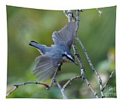 Rose Breasted Nuthatch Flying Tapestry