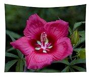 Rosey Blossom Tapestry