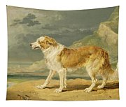 Rough-coated Collie Tapestry