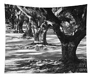 Row Of Oaks - Black And White Tapestry