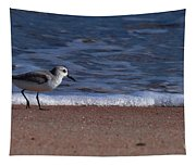 Run By The Sea Tapestry