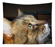 Runcius- The King Kitty Tapestry
