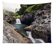 Sacred Pool Falls Tapestry