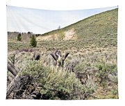 Sage And Pasture Tapestry