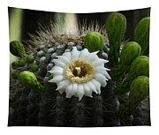 Saguaro Cactus Blooms  Tapestry