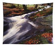 Sally Gap, County Wicklow, Ireland Tapestry