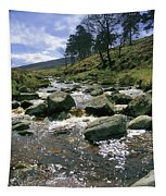 Sally Gap, River Liffey, Co Wicklow Tapestry