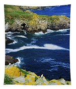 Saltee Islands, Co Wexford, Ireland Tapestry
