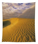Sand Dune And Sky Tapestry