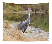 Sandhill Crane Beauty By The Pond Tapestry
