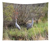Sandhill Cranes In Colorful Marsh Tapestry